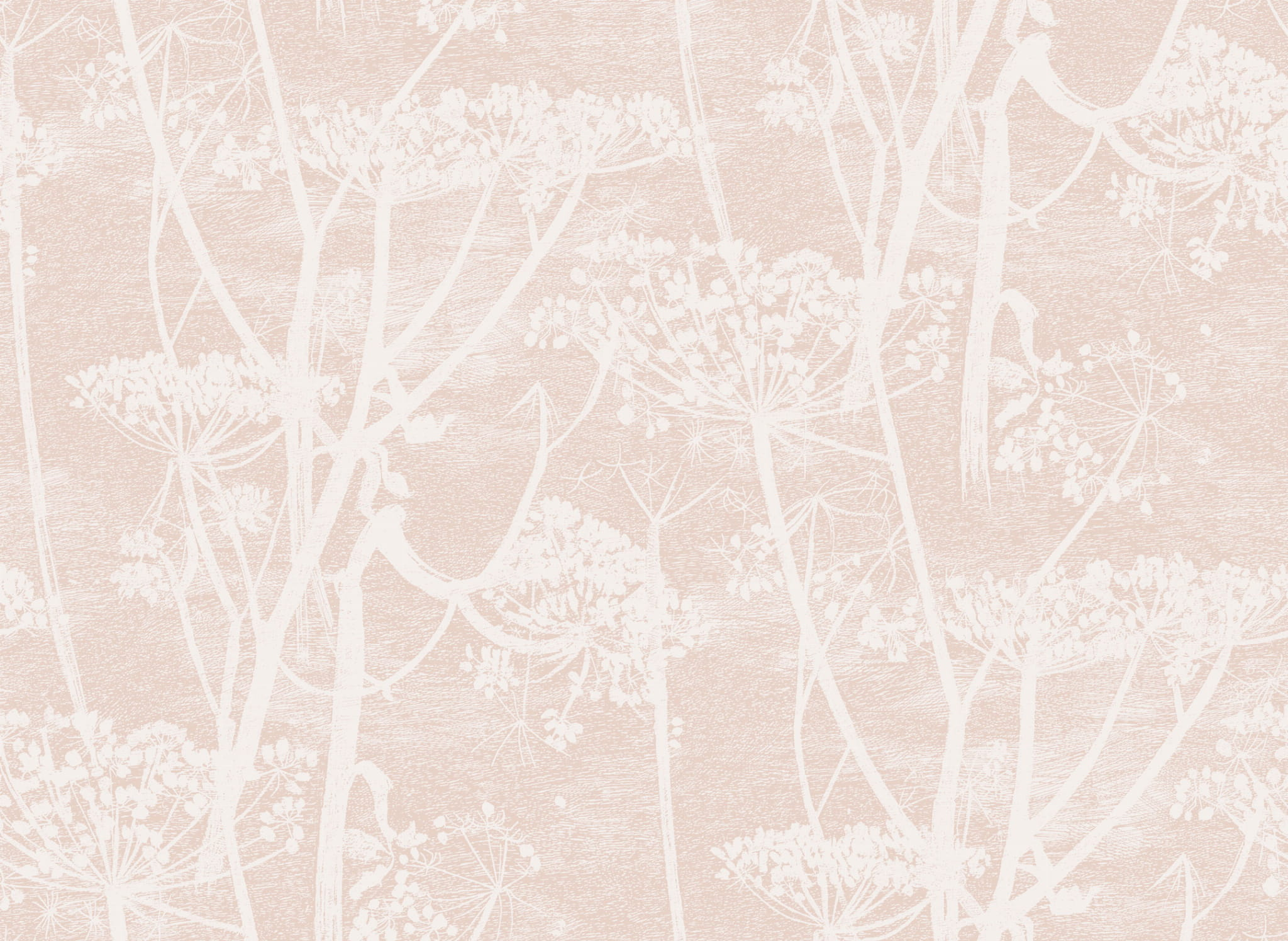 Tapeta Cole and Son Cow Parsley White/Pink