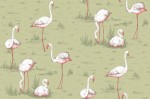 Tapeta Cole and Son Flamingos White/Olive