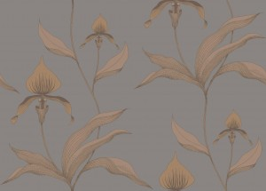 Tapeta Cole and Son Orchid Copper/Grey