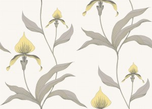 Tapeta Cole and Son Orchid Lemon/Grey/Chalk