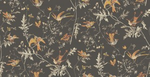 Tapeta Cole and Son Hummingbirds Charcoal/Ginger