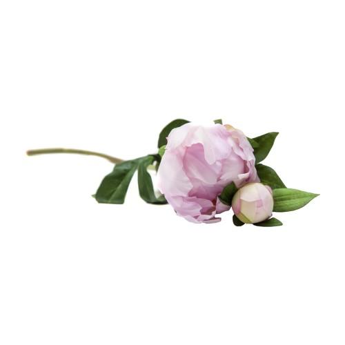 Piwonia Peonia Pastelowy Róż Wys 45cm
