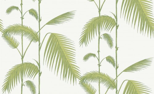 Tapeta Cole and Son Palm Leaves Green/White
